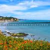 avila beach pier-5046