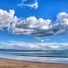 avila dog beach 4405-