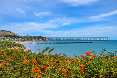 avila beach pier-5047