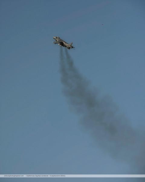 F20140906_5937-Harrier
