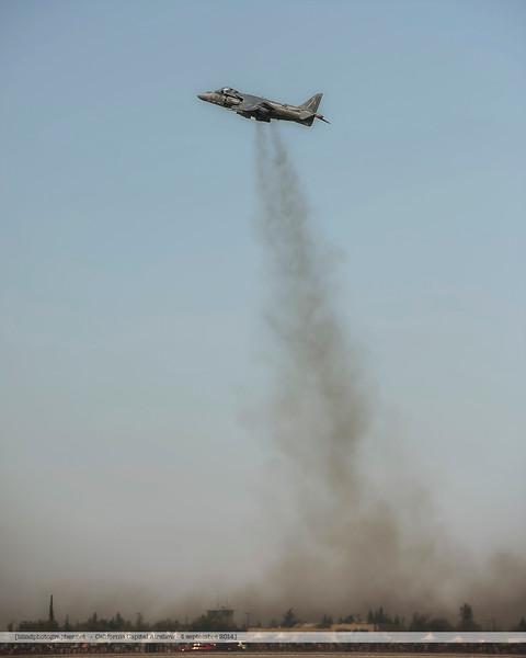 F20140906_5935-Harrier