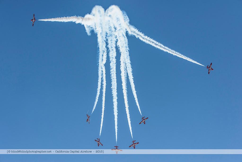 F20151002a115904_3019-Tutor-Snowbirds