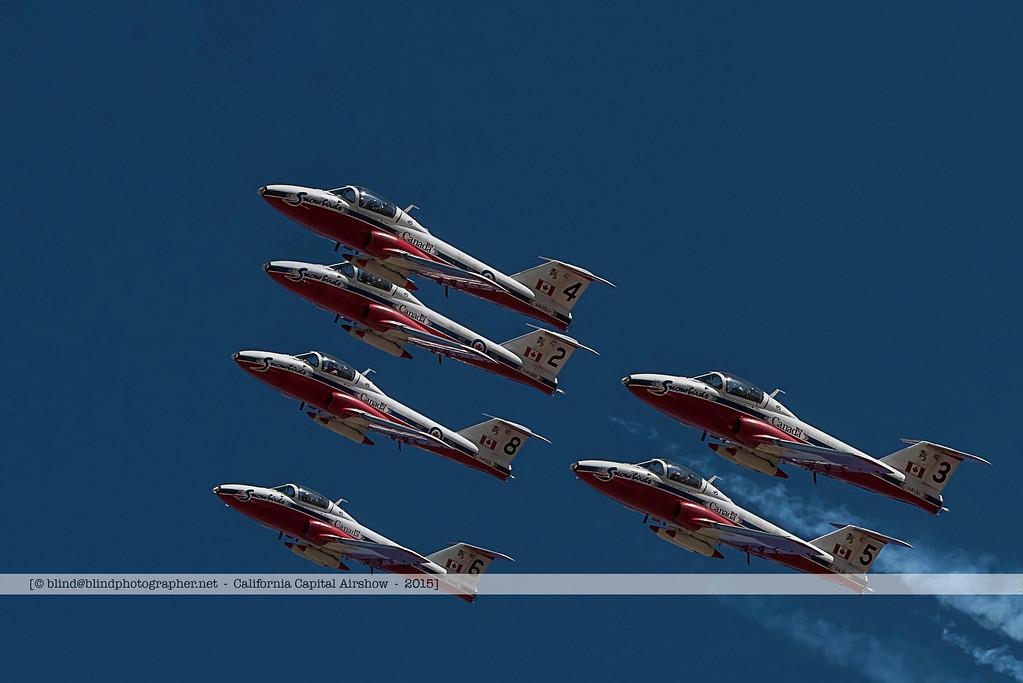 F20151002a114837_2868-Tutor-Snowbirds