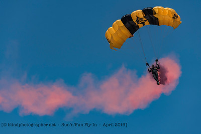 F20160408a135314_1471-Golden Knights-parachutes