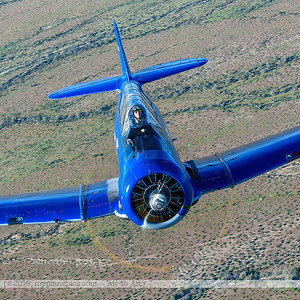 F20190314a170509_3802-North American SNJ-5 T-6 Texan-N3246G-90725