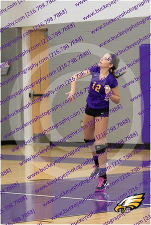 20150930_174933 - 0005 - AMS Girls Purple Volleyball
