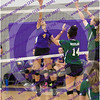 20150930_180233 - 0042 - AMS Girls Purple Volleyball