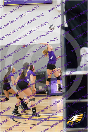 20150930_175902 - 0030 - AMS Girls Purple Volleyball