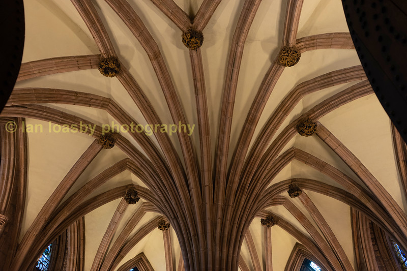 How the centre column of the chapter house splays out to support the roof
