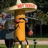Hot Tamales - Alvin TX