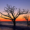 Sunrise at Bone Yard Beach in Botany Bay - Edisto Island, SC