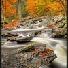 Cascade 2 - Ricketts Glen State Park - PA