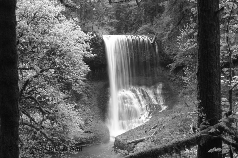 Middle North Falls - Silver Falls State Park, Oregon<br /> <br /> Third Place, Waterscape - Washington County Fair 2007