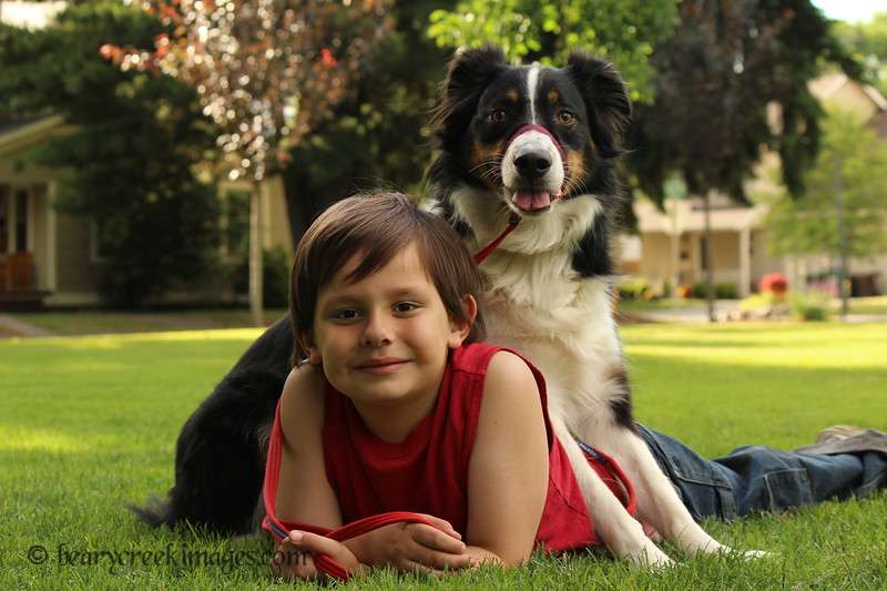 A Boy & His Dog (Dylan & Dante)<br /> First Place - Child Portrait - 2011 Washington County Fair