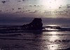 Wreck of the Peter Iredale - 1985<br /> <br /> Third Place - Washington County Fair 1986