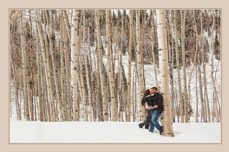 Love in the Trees by Jerry Hansen 2nd Place Masters Digital