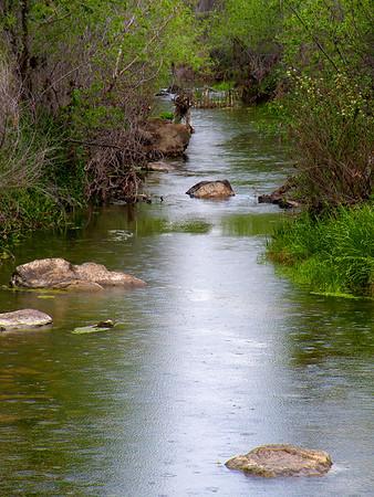 Raindrops On Marsh Creek
