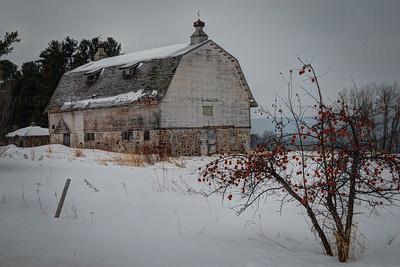 Winter Apples- Bayfield (140)