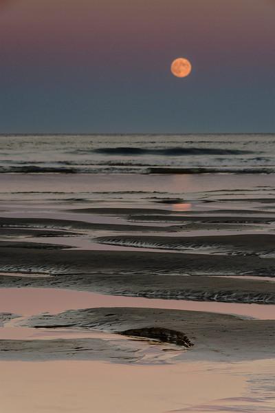Ogunquit Moonrise