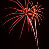 Firework Palms