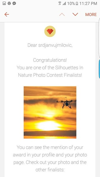 Silhouettes in Nature Photo Competition - Finalist