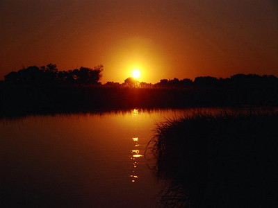 """Sara Snyder - """"Sunset in Okavanga Delta, Botswana"""" - 2008 Sunset at Sunset Competition - Honorable Mention"""