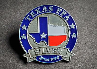 Silver Competition Award Pin