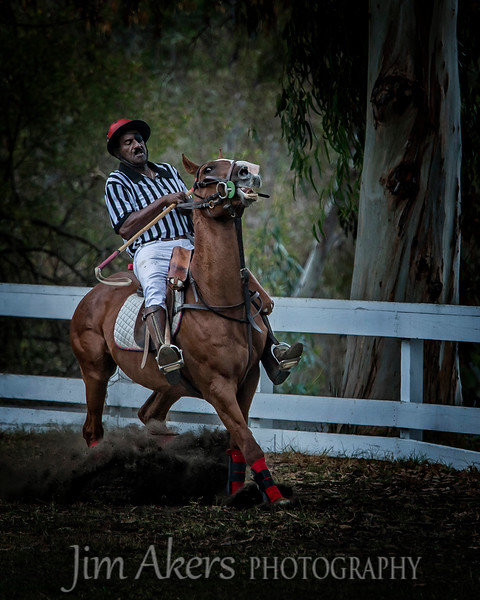 """Power Struggle"" was shot at a polo match at Will Rodgers State Park in Pacific Palisades, CA. Note the eye patch over the umpire's right eye.  This photo scored a 83 in a 2015 Professional Photographers of Los Angeles County digital competition."