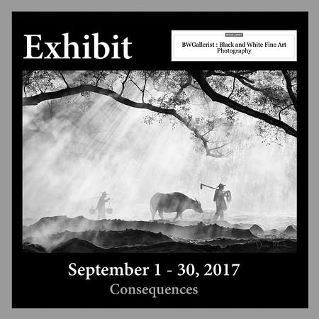 BWGallerist Exhibit (2017)