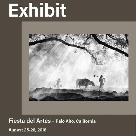 Exhibit in Palo Alto, California (August 2018)
