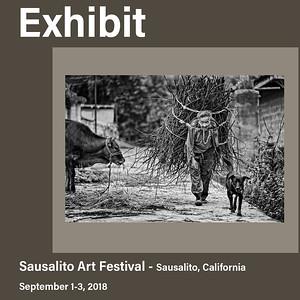 Heart of the Yi Exhibit, Sausalito (2018)