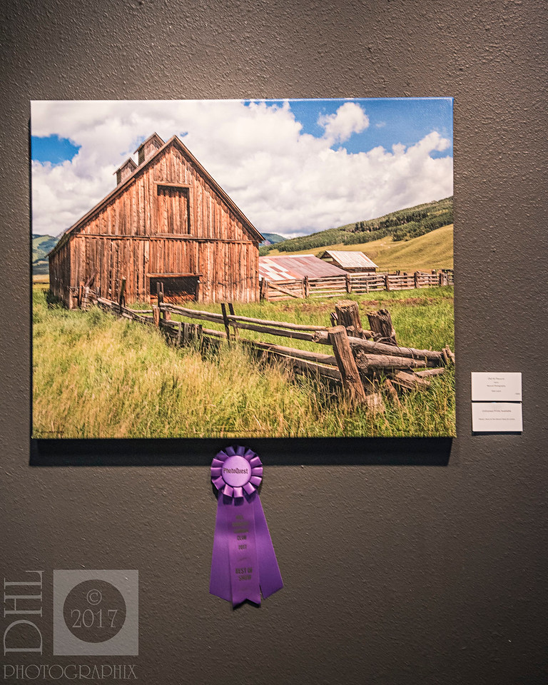 "⭐️ Best in Show Award: ""Out to Pasture"" ⭐️"