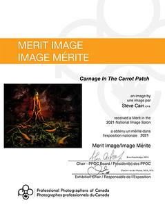 Carnage In The Carrot Patch - National Merit