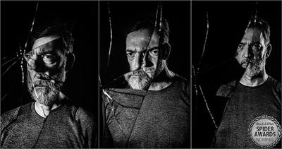 Despair-Struggle-And-Redemption-Spider Awards 2020