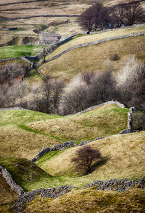 Wensleydale, Yorkshire Dales, North Yorkshire, England