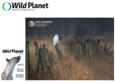 Wild Planet Photo Magazine April 2020