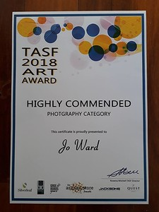 Wiiner of the Highly Commended in the photography category in the TASF 2018 Art Award