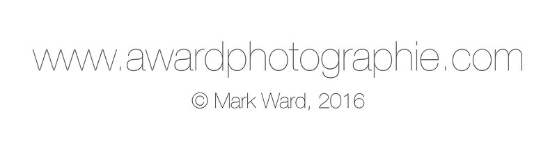 Awardphotographie website with credit