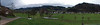 Black Forest Panorama