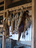 game drying