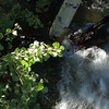 alger creek sunny spot