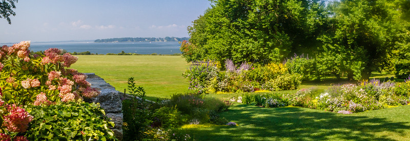Pink Hydrangea and Lawn to Narrangansett Bay