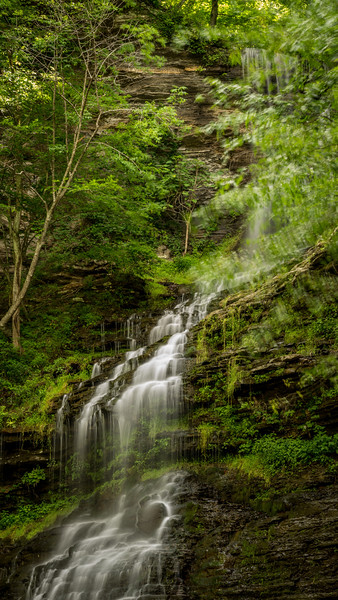 Cathedral Falls