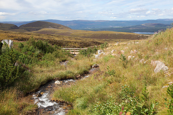 The view from near Cairngorm Ranger Base looking down to Loch Morlich and beyond, 19/08/11