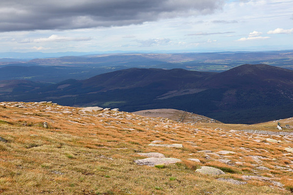 Heading down from the summit of Cairngorm, the Moray Firth can be seen in the far distance, 19/08/11