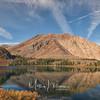 Viginia Lakes