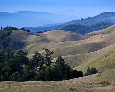 January 17, 2017.  Bolinas Ridge north of Mount Tamalpais.  My backyard.