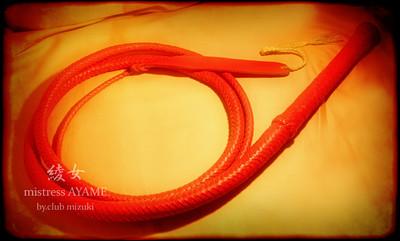 長い鞭。(ピンクのブルウィップ)