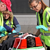 Harvard EMT's L-R, Chris Mitchell, Judy Mitchell (Chris's wife), and Kathy Williams treat a victim of the mock train crash in Ayer. Nashoba Valley Voice Photo by David H. Brow