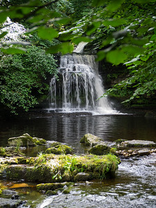 Cauldron Falls , Walden Beck, at QWest Burton, Wensleydale North Yorkshire